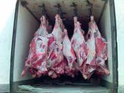 Продадим большим и мелким оптом говядину,  свинину