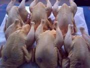 Мясо домашнего бройлера с.Вербовка Луганская область. т.0994893794